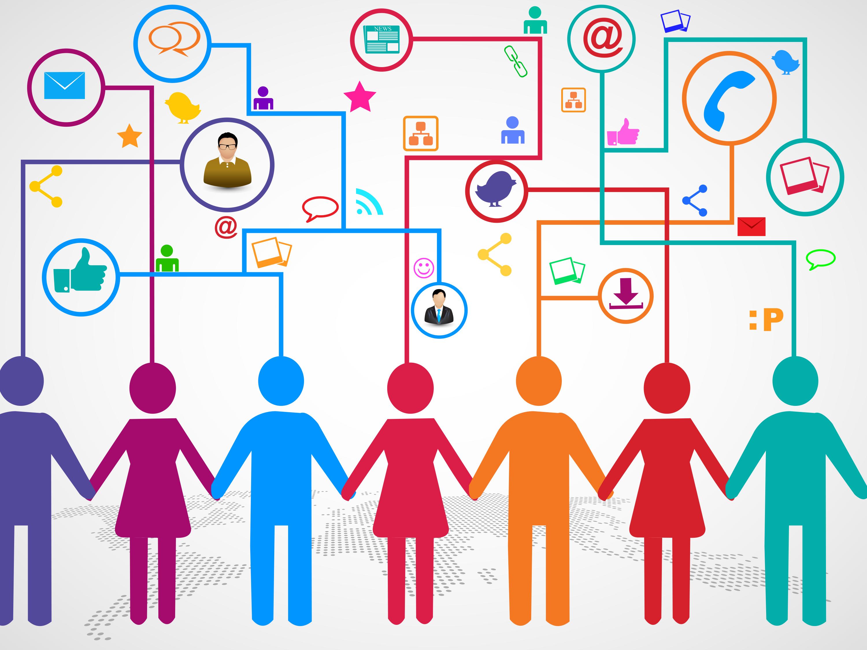 Plan Participant Data